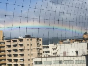 台風後の虹~サロンより