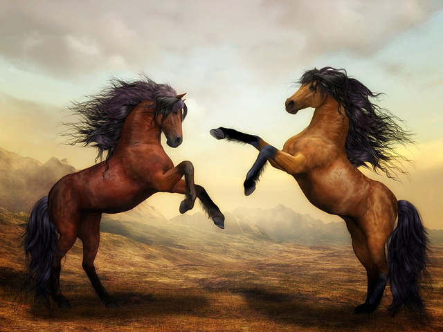 horses-